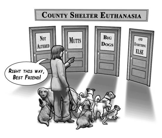 doggy_doors01_sm