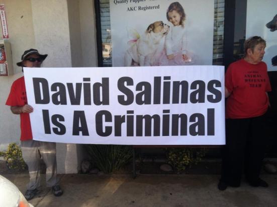 SALINAS IS CRIMINAL