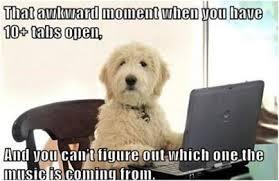 DOG AWKWARD